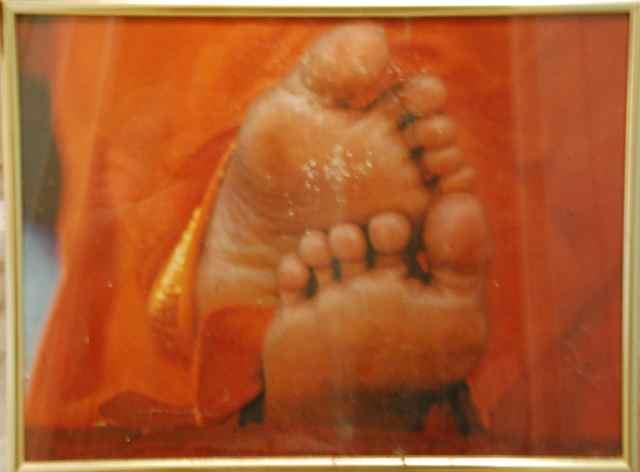 Swamis Füße